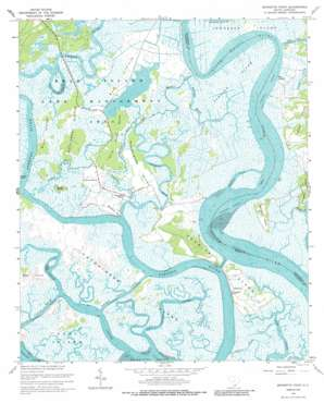 Bennetts Point topo map
