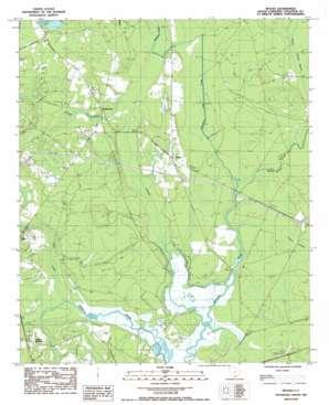 Neyles USGS topographic map 32080g5