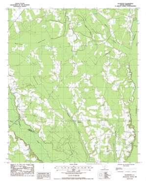 Islandton topo map
