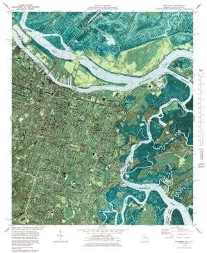Savannah topo map