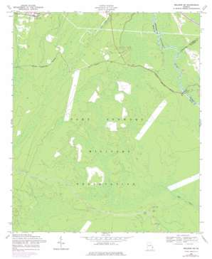 Meldrim Sw topo map