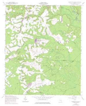 Glissons Millpond topo map