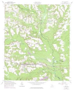 Daisy topo map