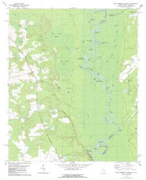 Blue Springs Landing topo map