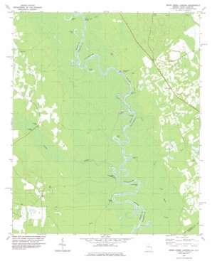 Brier Creek Landing USGS topographic map 32081g4