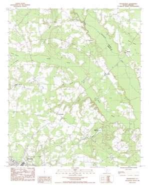 Crocketville topo map