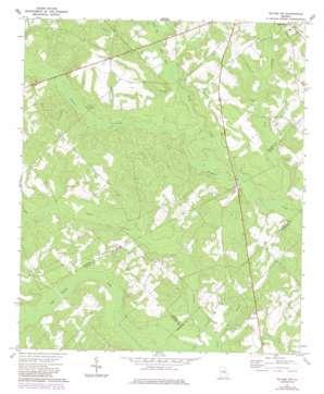 Mcrae Nw topo map