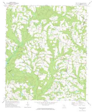 Twin City Se topo map