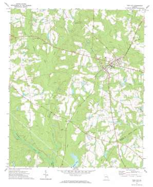 Twin City topo map