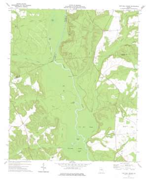Cow Hell Swamp topo map