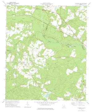 Colemans Lake USGS topographic map 32082g3