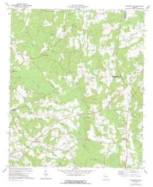 Davisboro Se topo map