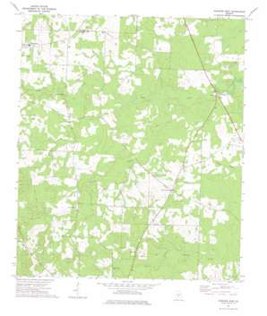 Pineview East topo map