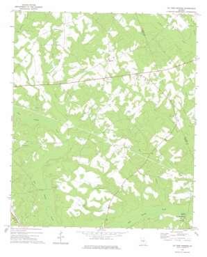Jay Bird Springs topo map