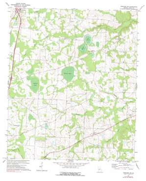 Pineview NW USGS topographic map 32083b6