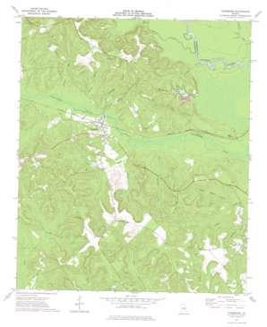 Toomsboro topo map