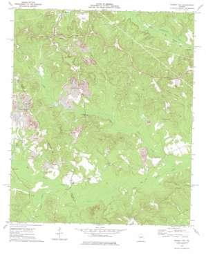 Massey Hill topo map