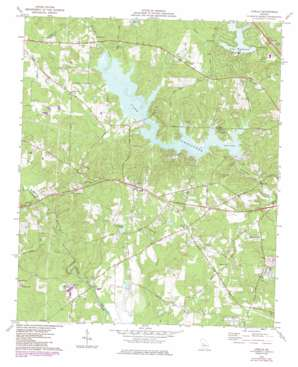 Lizella topo map