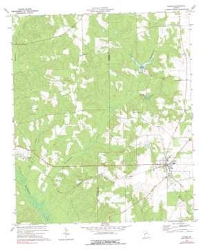 Plains USGS topographic map 32084a4