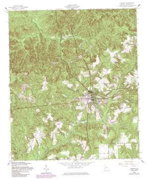 Lumpkin topo map