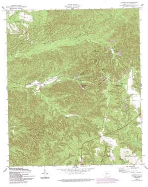 Lumpkin Sw topo map