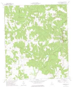Andersonville topo map