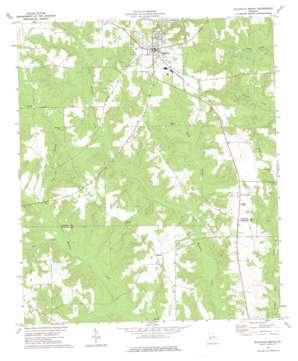 Ellaville South topo map