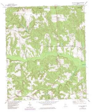 Ellaville North topo map