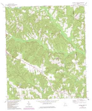 Tazewell South topo map