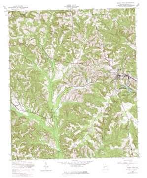 Buena Vista USGS topographic map 32084c5
