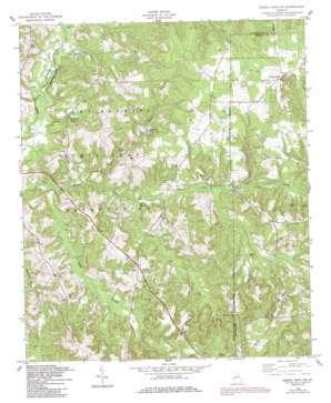 Buena Vista Nw topo map