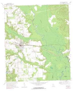 Reynolds USGS topographic map 32084e1