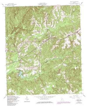 Geneva topo map