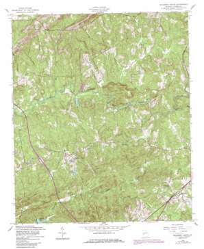 Mulberry Grove topo map