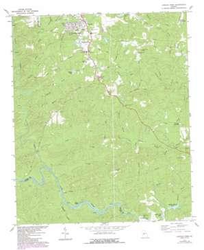 Lincoln Park topo map