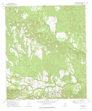 Batesville topo map
