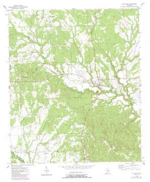 Pittsview topo map