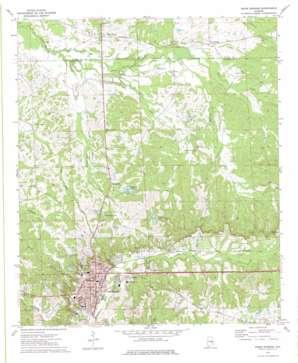 Union Springs topo map