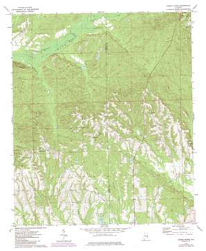 Creek Stand topo map