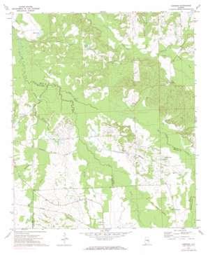 Chesson topo map