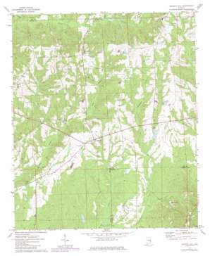 Society Hill topo map