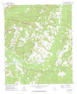 Little Texas topo map