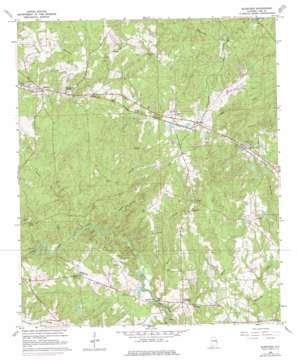 Bleecker topo map