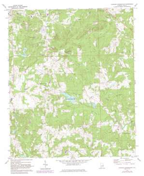 Parkers Crossroads topo map