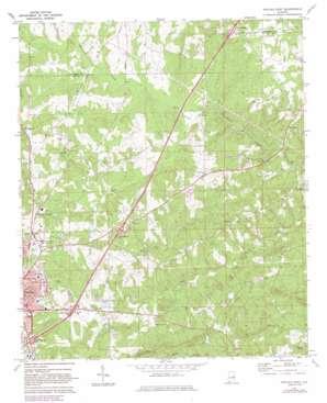 Opelika East topo map
