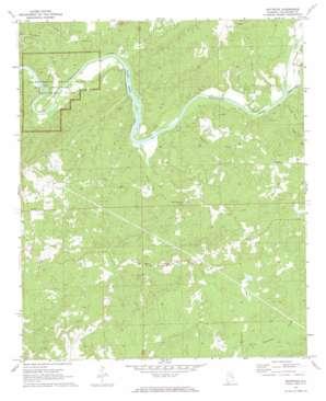 Buttston topo map