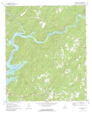 Jacksons Gap topo map