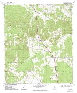 Pine Level topo map