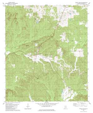 Mount Willing topo map