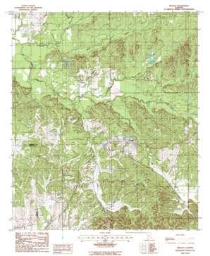 Braggs topo map